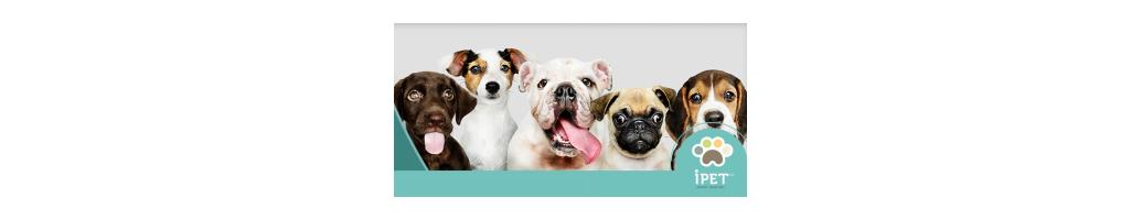 Alimento para perros. Croquetas para perro. Ropa para perro.